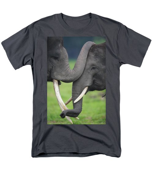 Asian Elephant Greeting T-Shirt by Cyril Ruoso