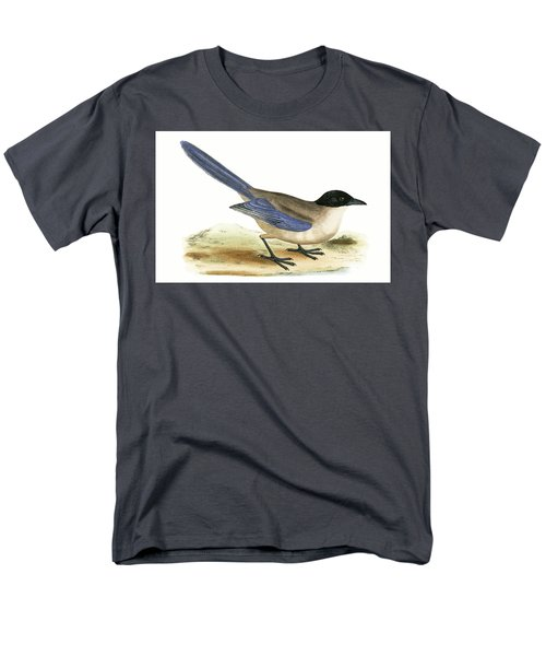 Azure Winged Magpie Men's T-Shirt  (Regular Fit) by English School