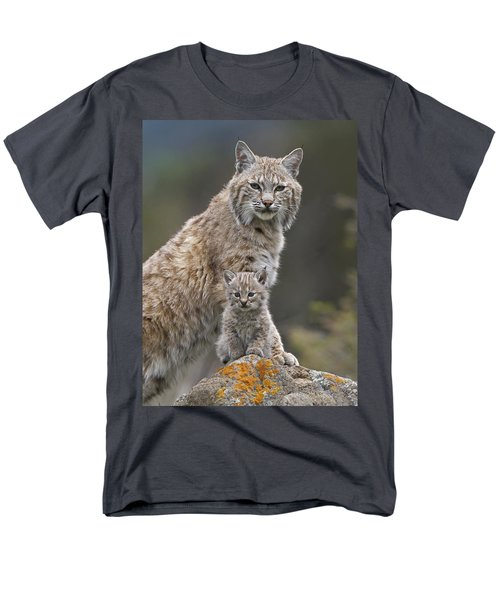 Bobcat Mother And Kitten North America T-Shirt by Tim Fitzharris
