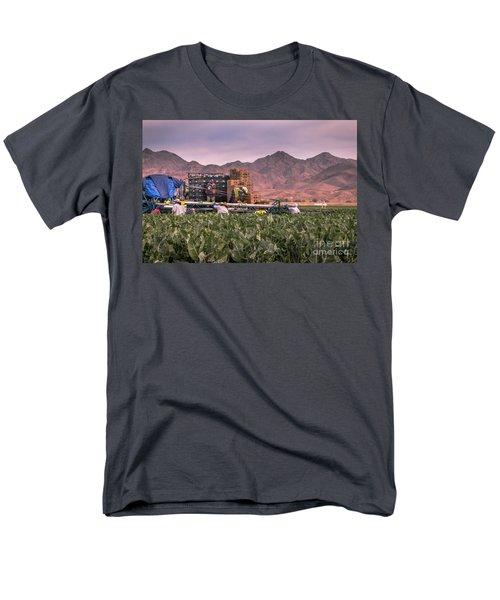 Cauliflower Harvest Men's T-Shirt  (Regular Fit) by Robert Bales