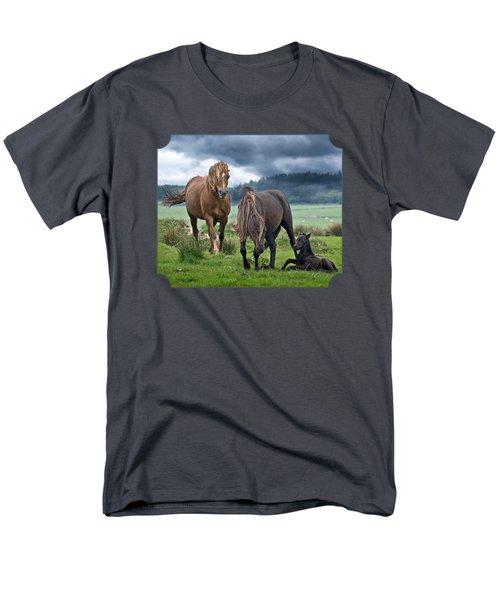 Dartmoor Ponies Men's T-Shirt  (Regular Fit) by Gill Billington