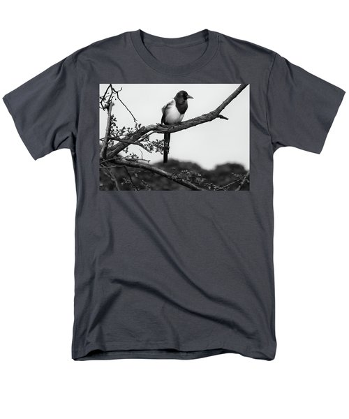 Magpie  Men's T-Shirt  (Regular Fit) by Philip Openshaw