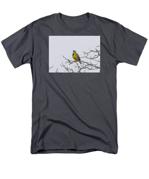 Meadowlark In Tree Men's T-Shirt  (Regular Fit) by Marc Crumpler