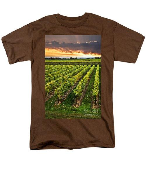 Vineyard at sunset T-Shirt by Elena Elisseeva