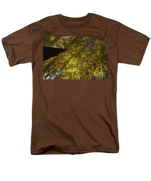 Fall maple T-Shirt by Steven Ralser
