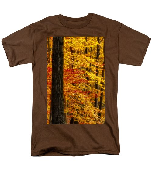 Golden Trees Glowing T-Shirt by Susan Candelario