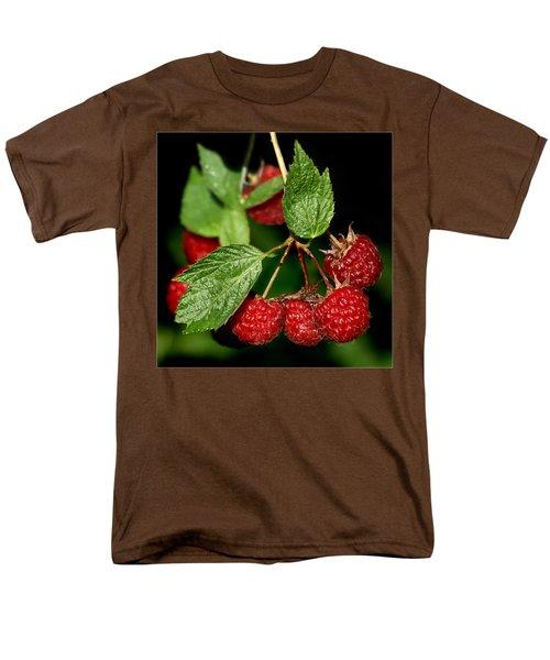 Raspberries Men's T-Shirt  (Regular Fit) by Nikolyn McDonald