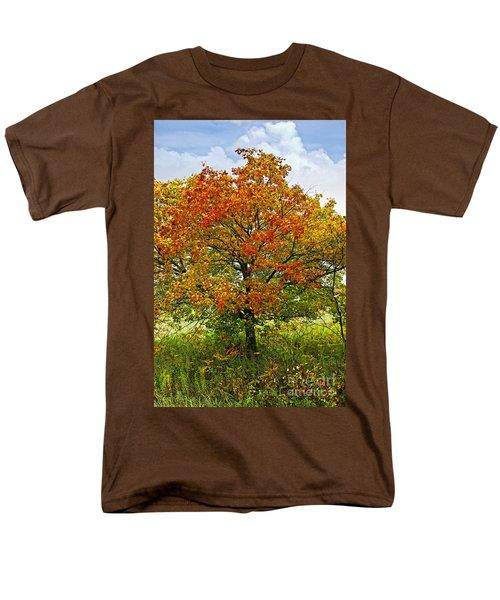 Autumn maple tree T-Shirt by Elena Elisseeva
