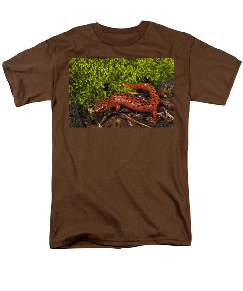 Red Salamander Pseudotriton Ruber Men's T-Shirt  (Regular Fit) by Pete Oxford
