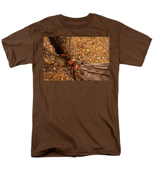 Autumn Fall T-Shirt by James BO  Insogna