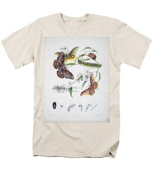 Australian Butterflies T-Shirt by Philip Ralley