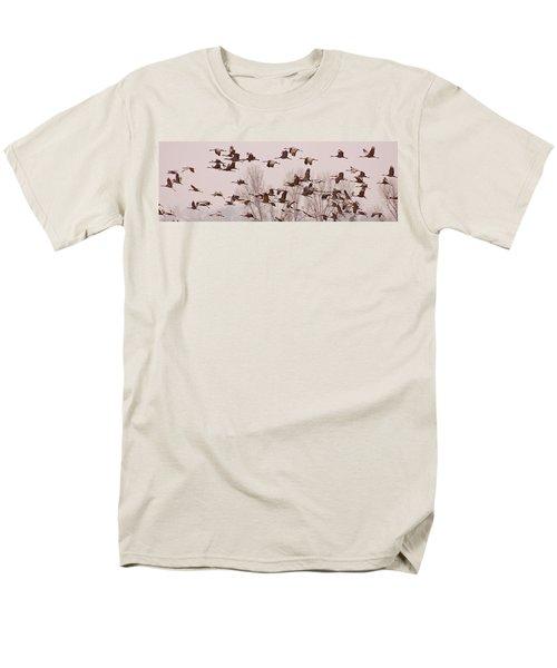 Cranes Across the Sky T-Shirt by Don Schwartz