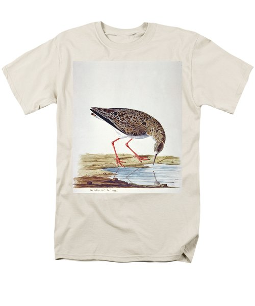 Curlew Sandpiper Men's T-Shirt  (Regular Fit) by Charles Collins