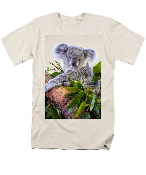 Koala On Top Of A Tree Men's T-Shirt  (Regular Fit) by Chris Flees