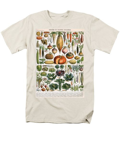 Illustration Of Vegetable Varieties Men's T-Shirt  (Regular Fit) by Alillot
