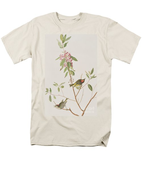 Ruby Crowned Wren Men's T-Shirt  (Regular Fit) by John James Audubon