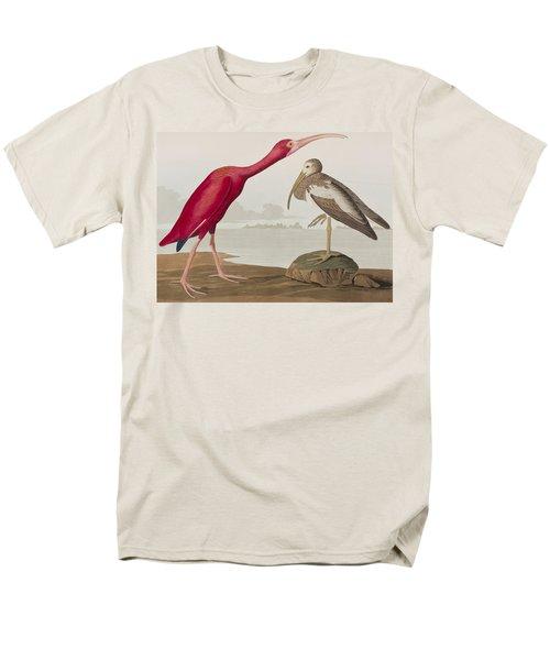 Scarlet Ibis Men's T-Shirt  (Regular Fit) by John James Audubon