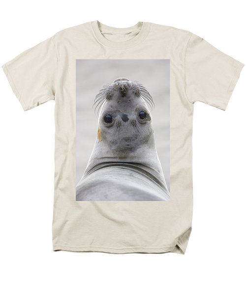 Northern Elephant Seal Looking Back T-Shirt by Ingo Arndt