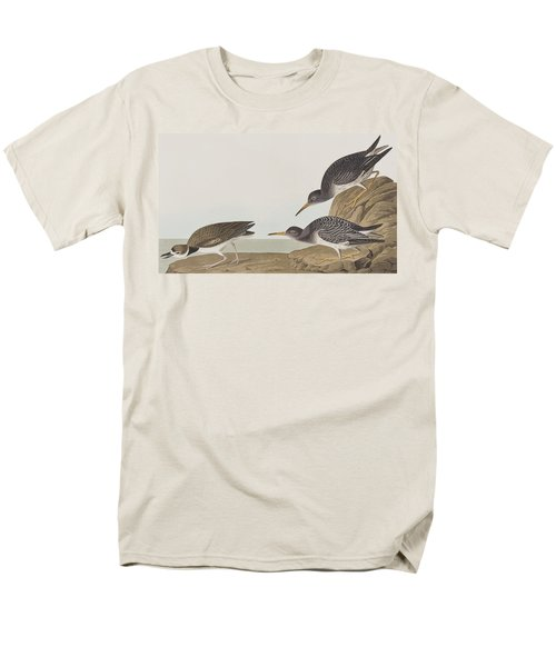 Purple Sandpiper Men's T-Shirt  (Regular Fit) by John James Audubon