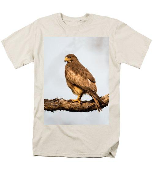 White-eyed Buzzard Butastur Teesa Men's T-Shirt  (Regular Fit) by Panoramic Images