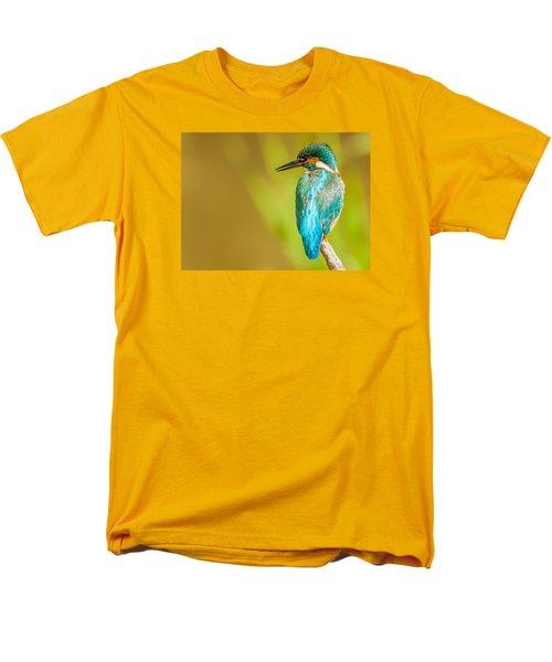 Kingfisher Men's T-Shirt  (Regular Fit) by Paul Neville