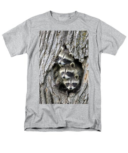Raccoon Trio At Den Minnesota Men's T-Shirt  (Regular Fit) by Jurgen & Christine Sohns
