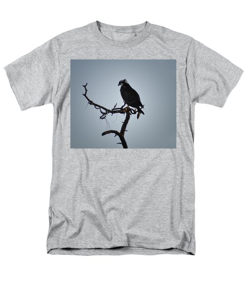 The Osprey Men's T-Shirt  (Regular Fit) by Bill Cannon