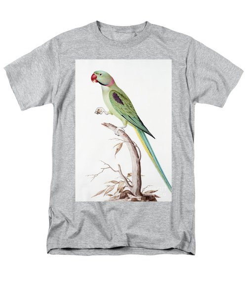 Alexandrine Parakeet Men's T-Shirt  (Regular Fit) by Nicolas Robert
