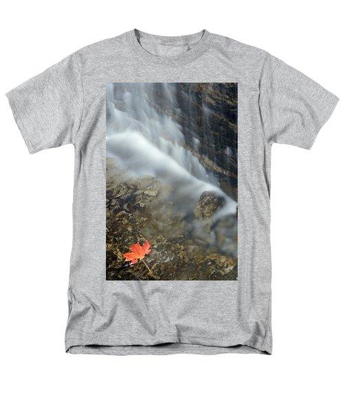 Closeup Maple Leaf And Decew Falls, St T-Shirt by Darwin Wiggett