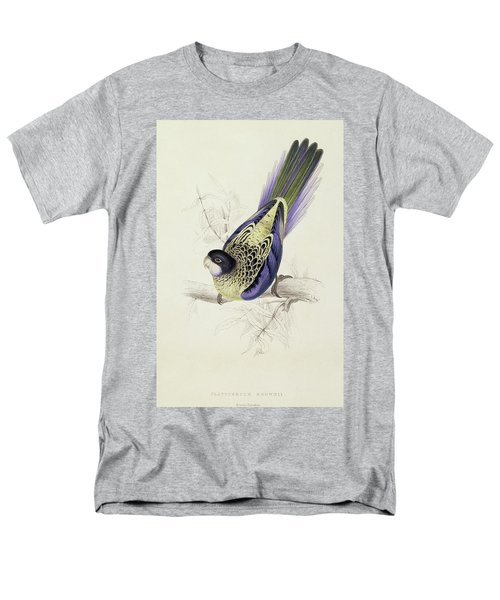 Platycercus Brownii, Or Browns Parakeet Men's T-Shirt  (Regular Fit) by Edward Lear