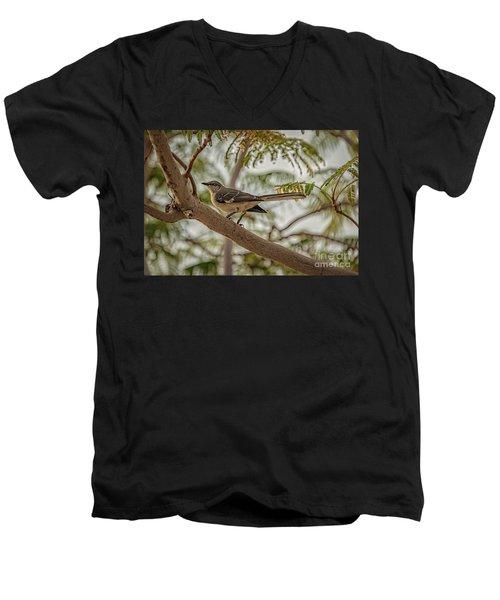 Mockingbird Men's V-Neck T-Shirt by Robert Bales