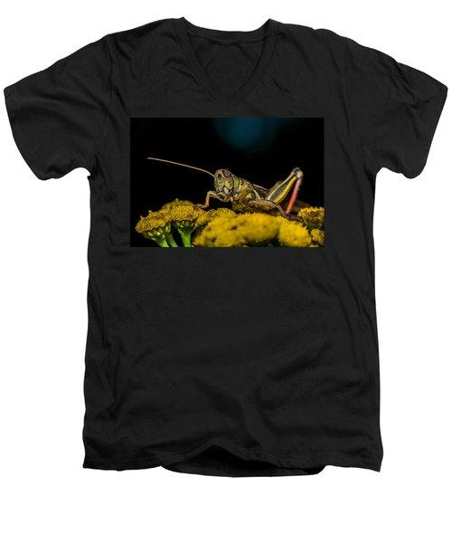 Antenna Down Men's V-Neck T-Shirt by Paul Freidlund