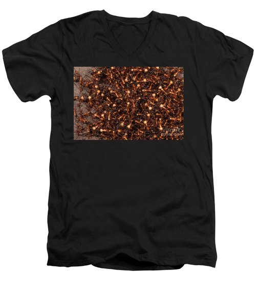Army Ants Men's V-Neck T-Shirt by Art Wolfe