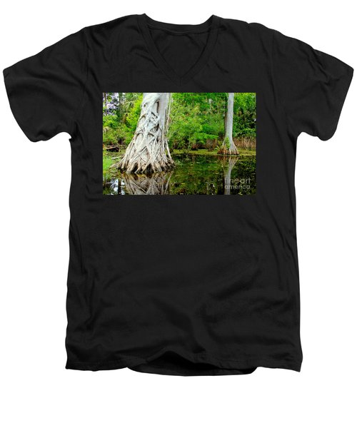 Backcountry Men's V-Neck T-Shirt by Carey Chen