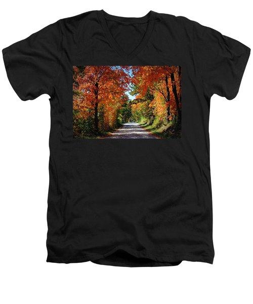 Blaze Of Glory Men's V-Neck T-Shirt by Cricket Hackmann