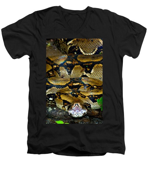 Close-up Of A Boa Constrictor, Arenal Men's V-Neck T-Shirt by Panoramic Images