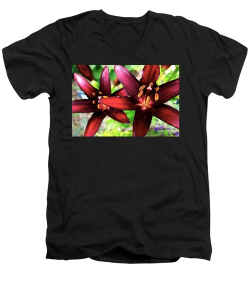 Dimension Lily 2 Men's V-Neck T-Shirt by Jacqueline Athmann