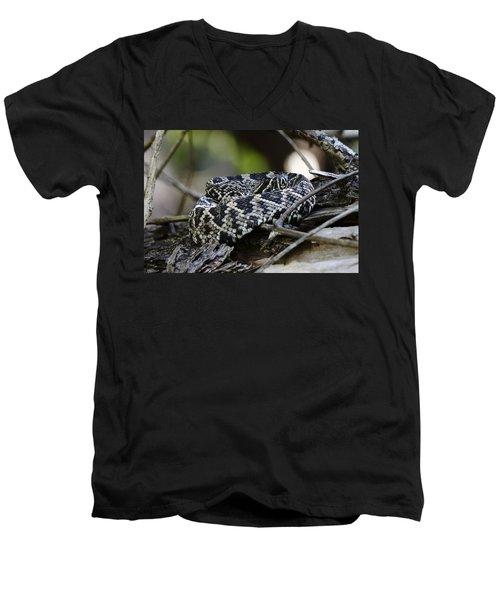 Eastern Diamondback-1 Men's V-Neck T-Shirt by Rudy Umans