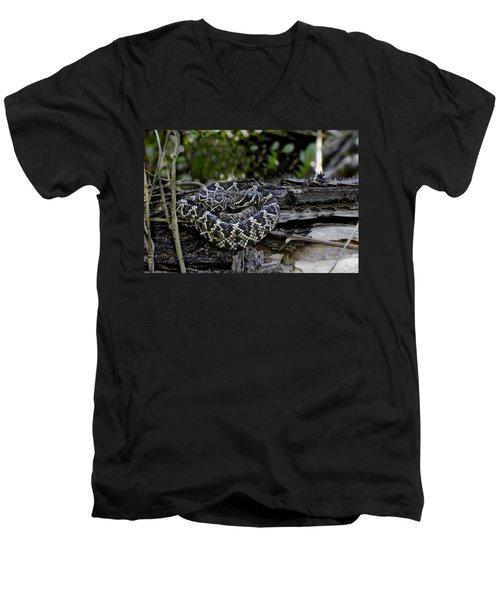 Eastern Diamondback-2 Men's V-Neck T-Shirt by Rudy Umans