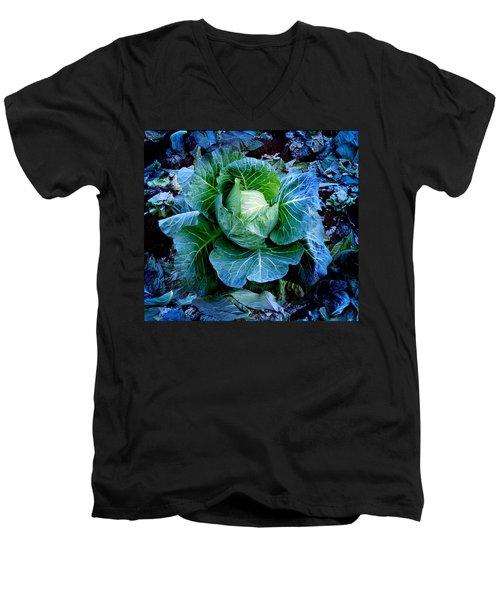 Flower Men's V-Neck T-Shirt by Julian Cook