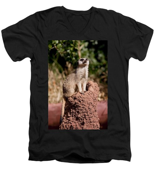 Lookout Post Men's V-Neck T-Shirt by Michelle Wrighton
