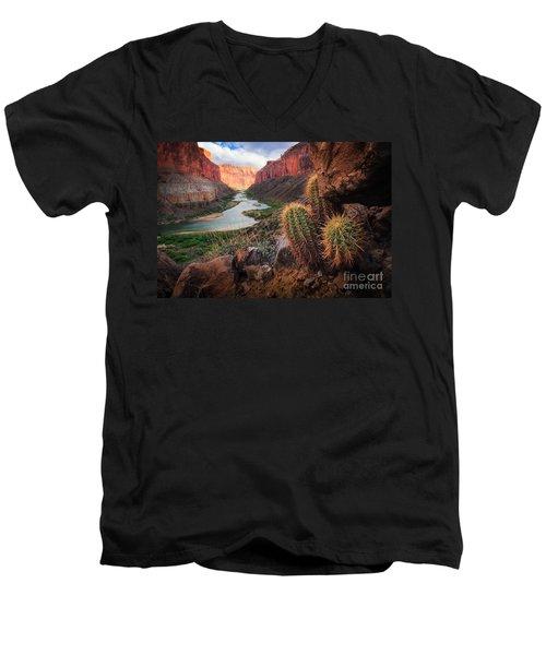 Nankoweap Cactus Men's V-Neck T-Shirt by Inge Johnsson
