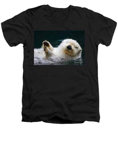 Napping On The Water Men's V-Neck T-Shirt by Mike  Dawson