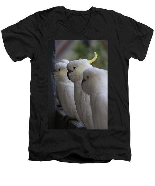 The Line-up Men's V-Neck T-Shirt by Douglas Barnard