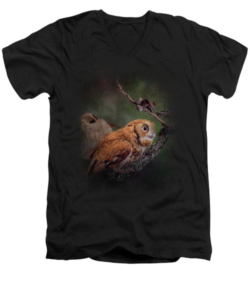 After The Acorns Fall Men's V-Neck T-Shirt by Jai Johnson