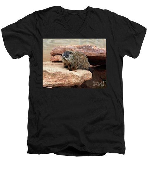 Groundhog Men's V-Neck T-Shirt by Louise Heusinkveld