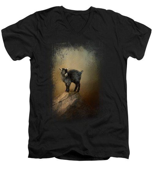 Little Rock Climber Men's V-Neck T-Shirt by Jai Johnson