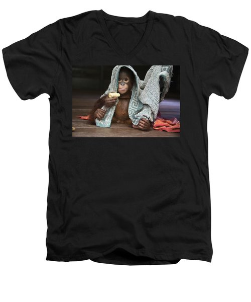 Orangutan 2yr Old Infant Holding Banana Men's V-Neck T-Shirt by Suzi Eszterhas
