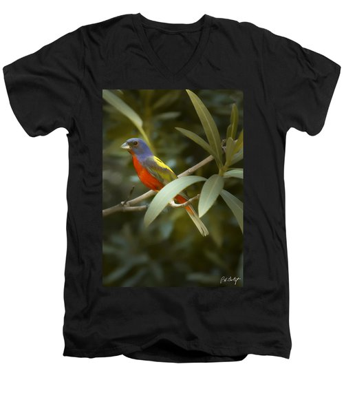 Painted Bunting Male Men's V-Neck T-Shirt by Phill Doherty