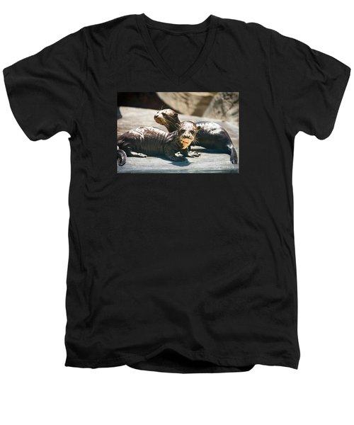 Siblings Men's V-Neck T-Shirt by Jamie Pham